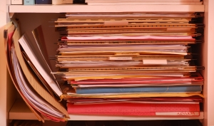 Sunshine Requests And Open Records / The Steele Law Firm