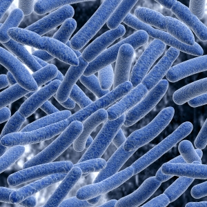 Clostridium Difficile / The Steele Law Firm